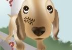 Escândalos com os cães dos famosos - Arte/UOL