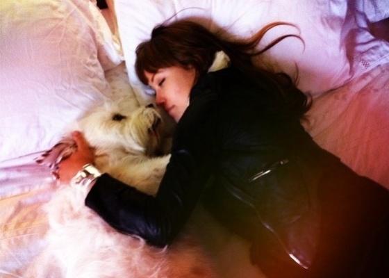A atriz Olivia Wilde e seu cachorro, em foto publicada no Twitter