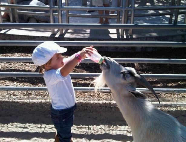 Rafella, filha de Ticiane Pinheiro e Roberto Justus, em zoológico em Miami, Estados Unidos (6/1/2012)