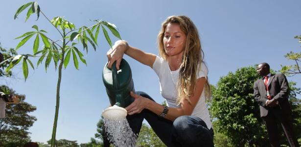 Embaixadora da Boa Vontade, a modelo Gisele Bündchen planta muda na sede do Programa das Nações Unidas para o Meio Ambiente, no Quênia (13/01/12)