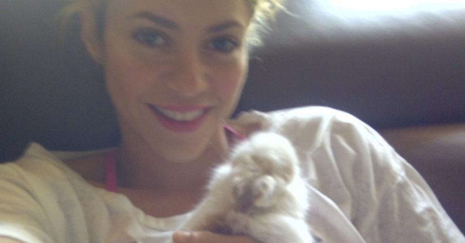 Shakira mostra coelha de estimação no Twitter (20/3/12)
