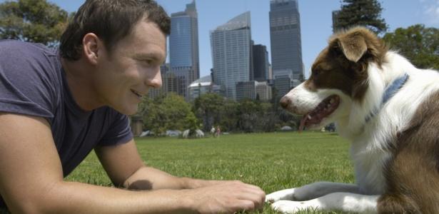 Acariciar um cachorro eleva os níveis de imunoglobulina A, anticorpo que atua na prevenção de várias doenças, indicam pesquisas