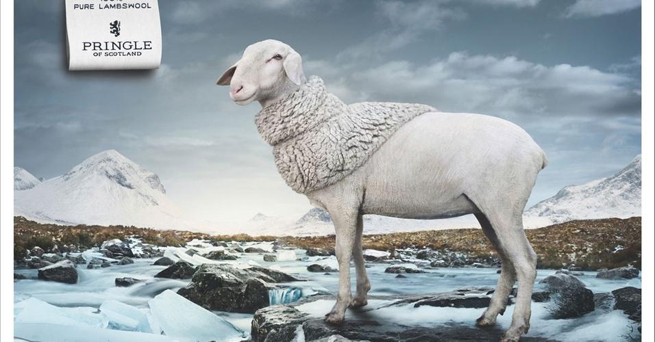 Abril 2011: A grife inglesa Pringle of Scotland trocou as modelos de suas campanhas por uma ovelha para divulgar a nova coleção. A marca trabalhou em parceria com a agência publicitária alemã Fischer Appelt Furore