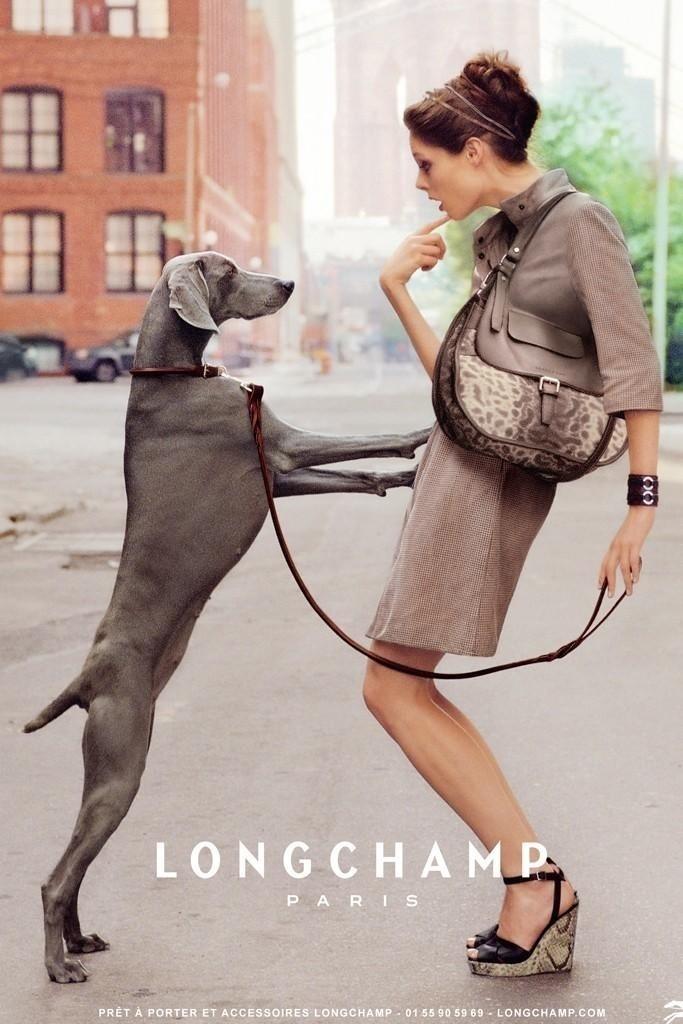 Dezembro 2011: A top canadense Coco Rocha contracena com um cachorro da raça weimaraner na campanha da grife francesa de luxo Longchamp para o Verão 2012. As fotos foram feitas por Dane Shitagi