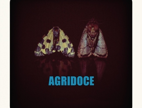 Capa do primeiro disco do Agridoce, banda de Pitty e Martin Mendonça (2011)