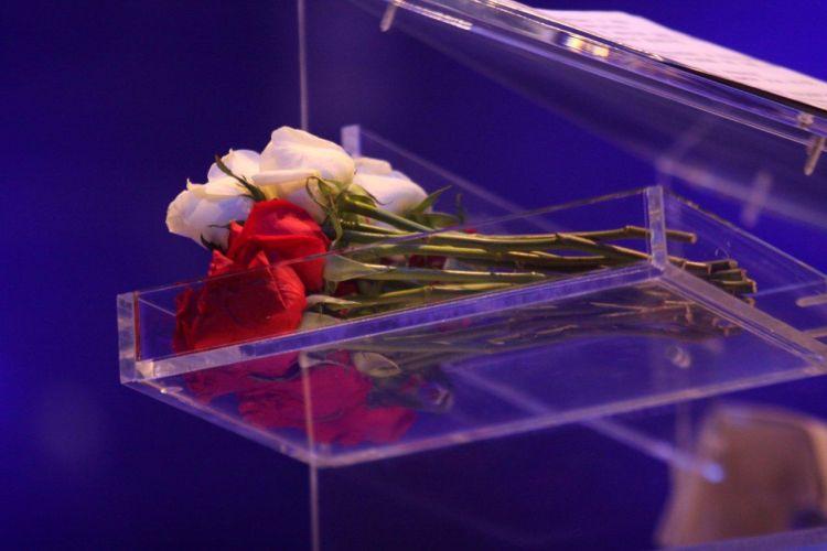 As famosas rosas distribuídas para plateia no show do rei Roberto Carlos, no Rio de Janeiro (8/12/11)