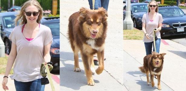 Amanda Seyfried passeia com seu cão pastor, o Finn, pelas ruas de Los Angeles (2/6/10)