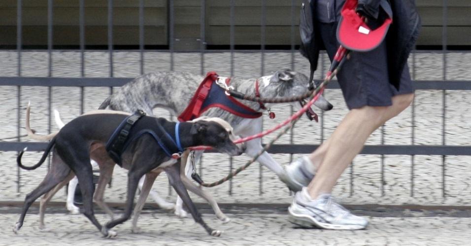 A atriz Betty Gofman corre com três cachorros perto da Lagoa Rodrigo de Freitas, no Rio de Janeiro (13/6/2010)