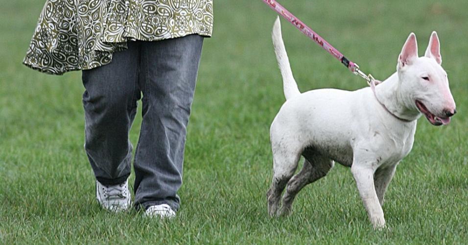 A cantora Lily Allen e sua cachorra Maggie May em um parque em Londres (20/2/2007)