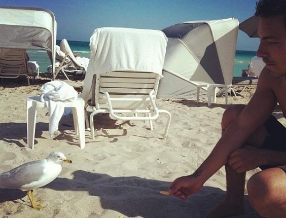 Mariana Rios fotografa Di Ferrero alimentando ave em praia de Miami e posta a imagem no Twitter (28/2/12)